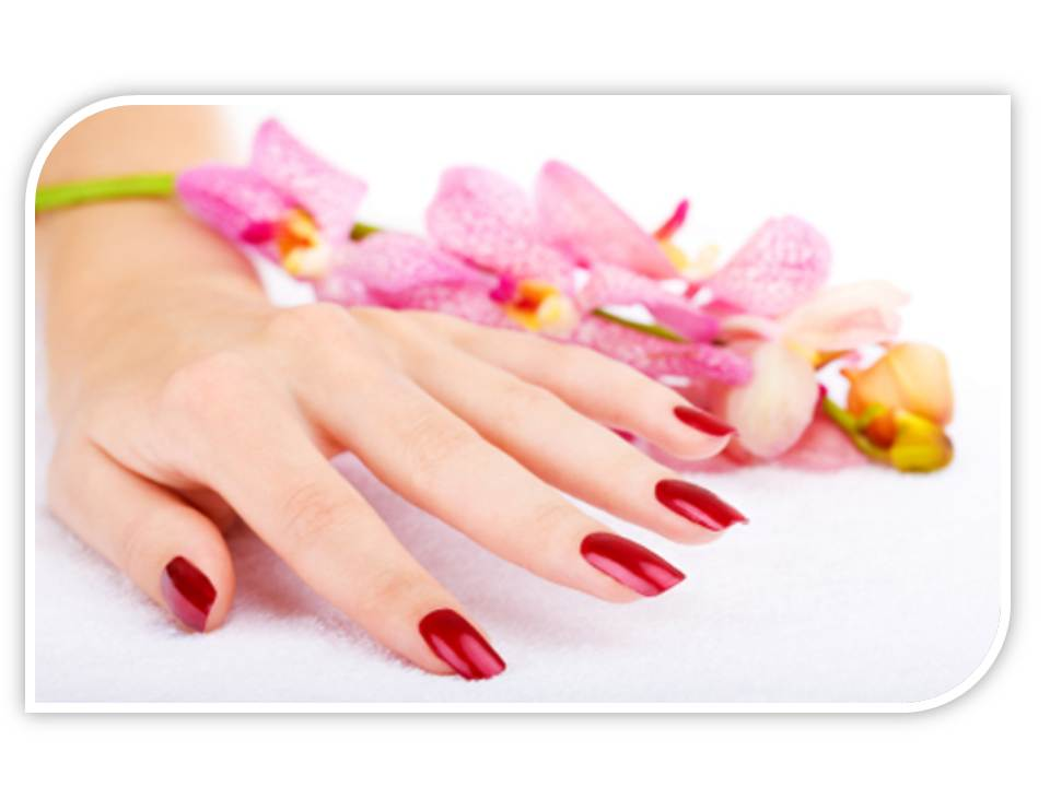 Nice Nail and Spa - Services